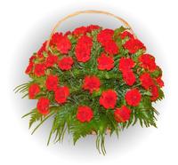 Корзина из живых цветов №91