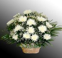 Корзина из живых цветов №53